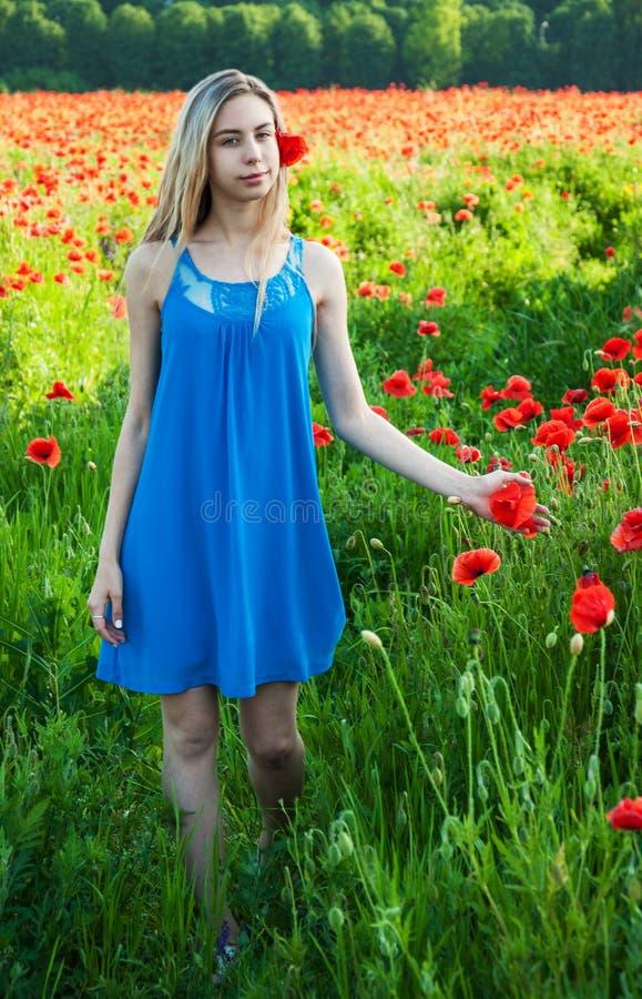 Ung flicka i vallmofältet royaltyfria bilder