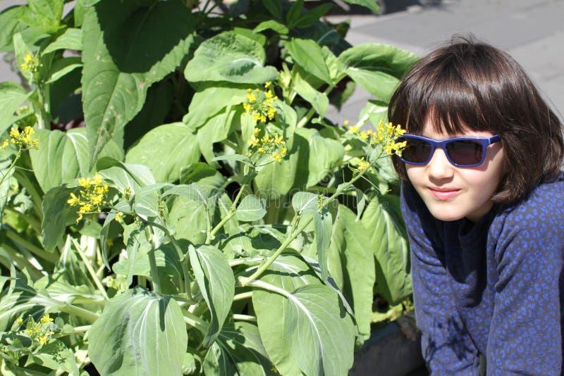 Ung flicka med solglasögon som ser blommor av självodlat senap royaltyfri foto