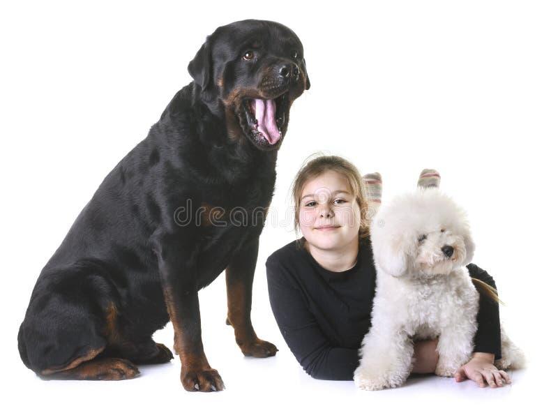 Ung flicka och hundkapplöpning arkivbild