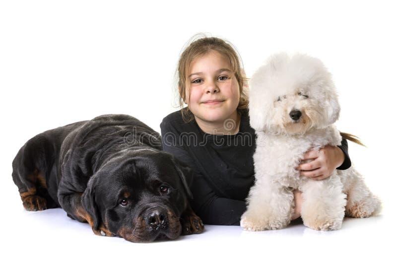 Ung flicka och hundkapplöpning arkivfoton