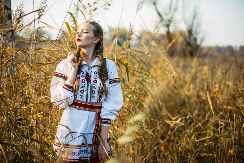 Ung flicka på sommarfältet i medborgareVitryssland kläder, fas royaltyfria foton