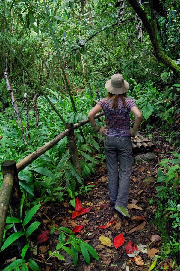 Ung flicka som beundrar vegetationen av djungeln i den Cordiliera centralen arkivfoto