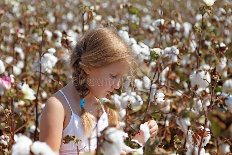 Ung flicka som går i ett fält av bomull fotografering för bildbyråer