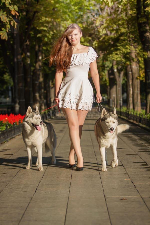 Ung flicka som går ner gatan med två hundkapplöpning royaltyfri foto