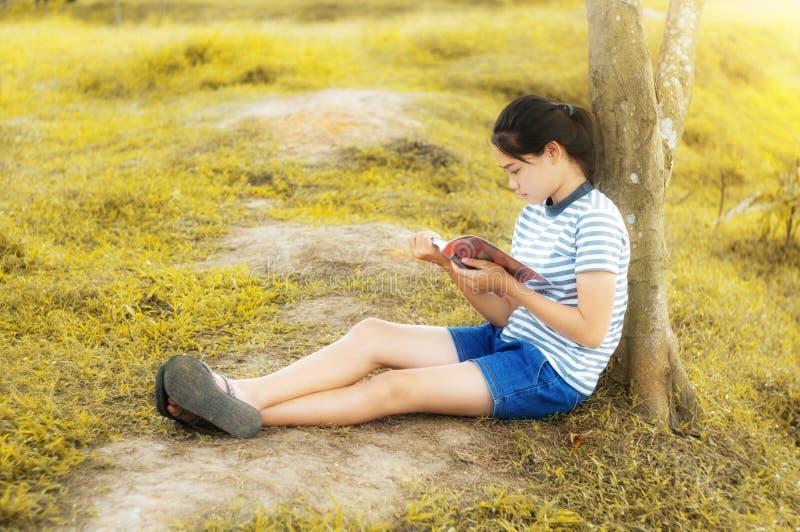 Ung flicka som läser en bok i guld- ängcontrysidenatur royaltyfria bilder