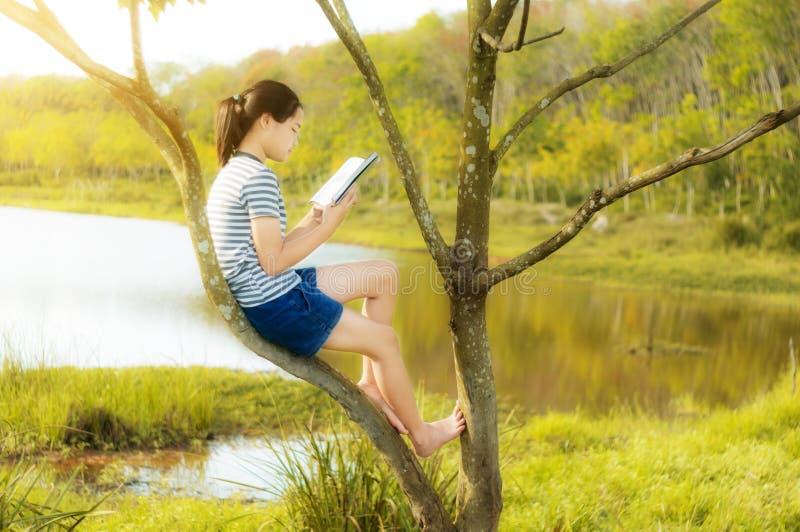 Ung flicka som läser en bok på trädet i guld- flodcontryside n arkivbilder