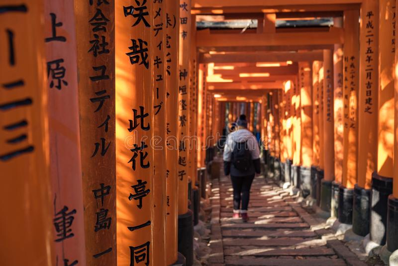 Ung flicka som mycket går ner en bana av röda trätoriis med svarta inskrifter i Fushimi Inari Shri arkivfoton