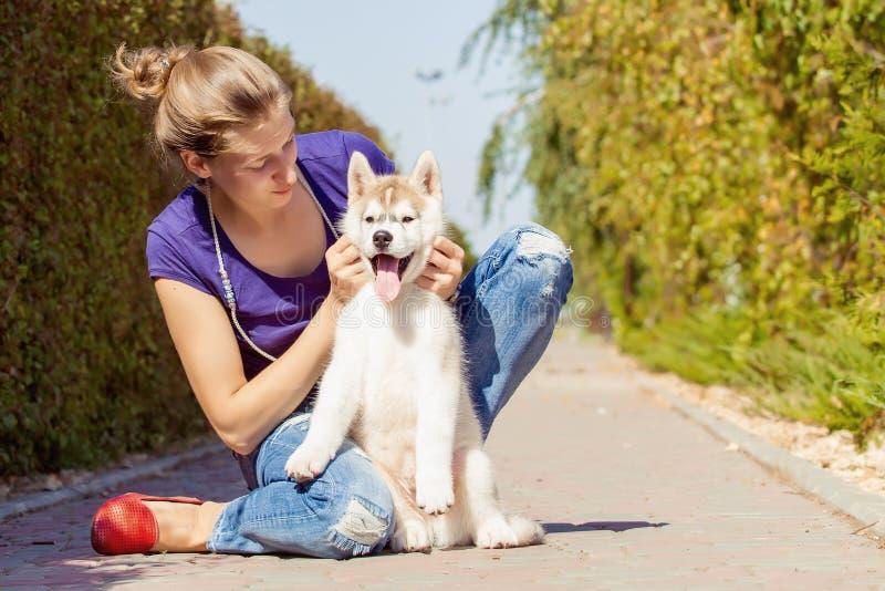 Ung flicka som spelar med en hund arkivbild