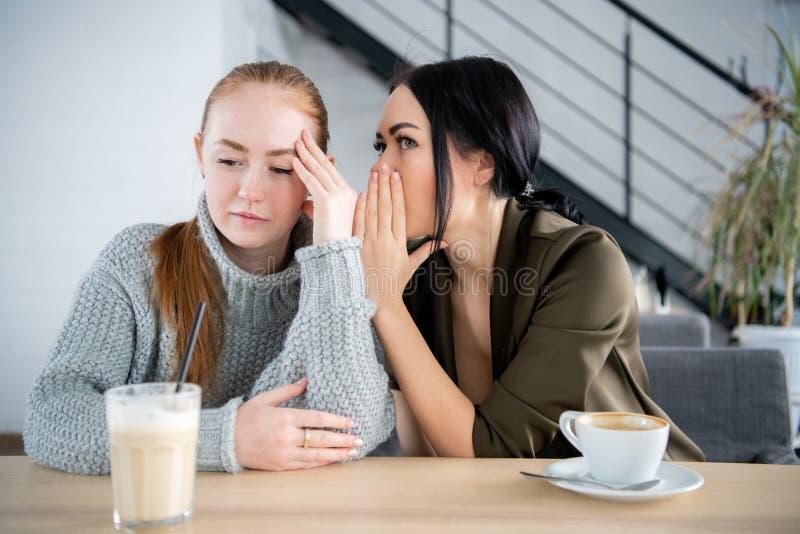 Ung flicka som talar med hennes upprivna vän i kafé arkivbild