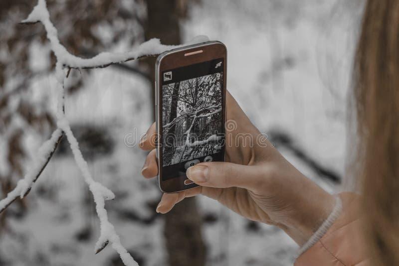 Ung flicka som tar vinternaturbilder med mobiltelefonen royaltyfri fotografi