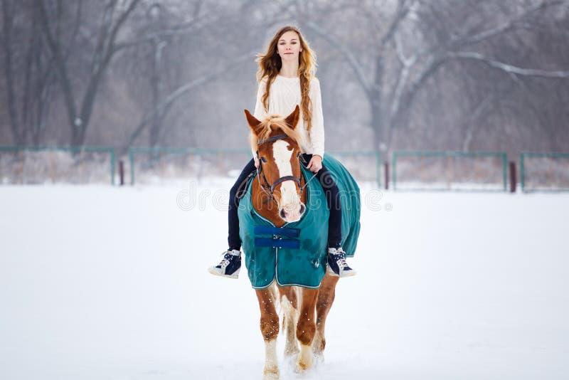 Ung flicka som tycker om hästryggridning i vinter fotografering för bildbyråer