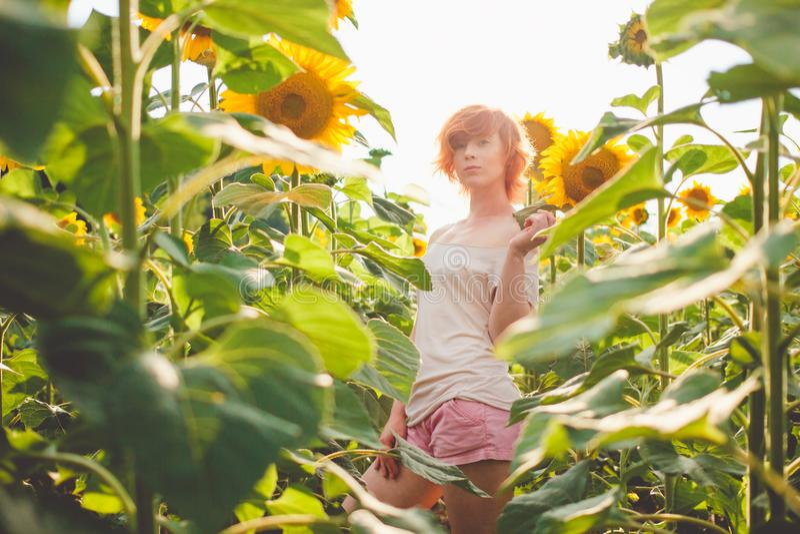 Ung flicka som tycker om naturen på fältet av solrosor på solnedgången, royaltyfri fotografi
