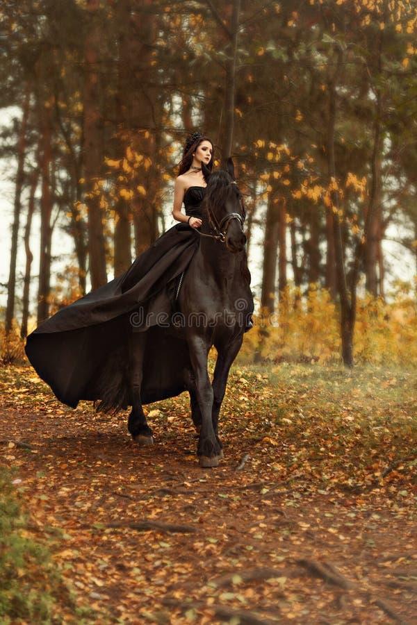 Ung flickahäxan en svart änka i en svart klänning och en tiara galopperar hästryggen på en Friesianhäst i morgondimman royaltyfri fotografi