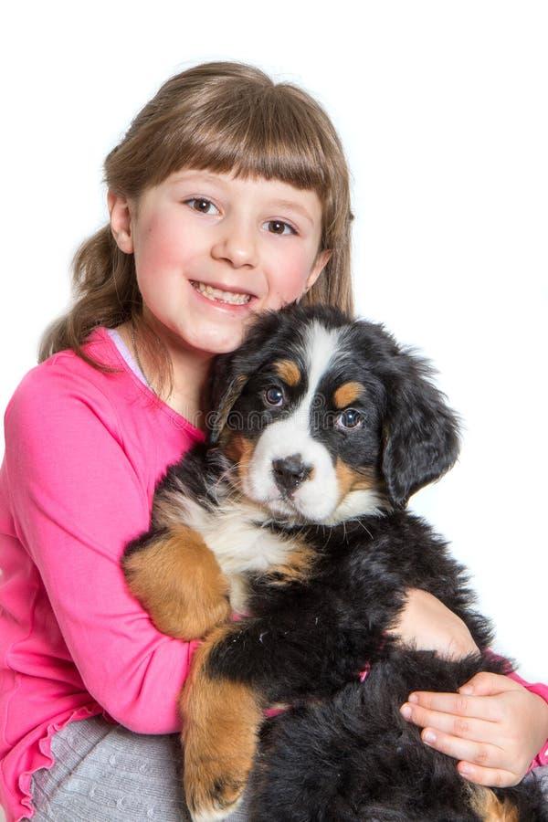 Ung flickakram en hundvalp för bernese berg arkivfoton