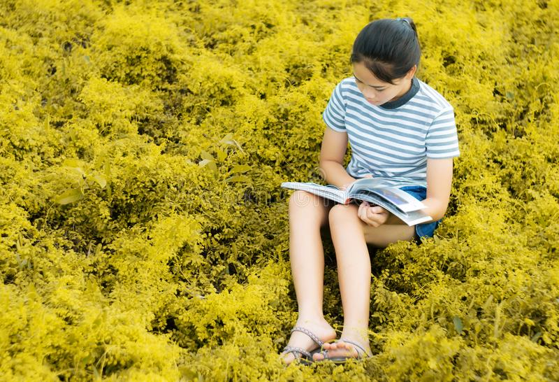 Ung flickaläsning i guld- ängcontrysidenatur i afton l royaltyfria bilder