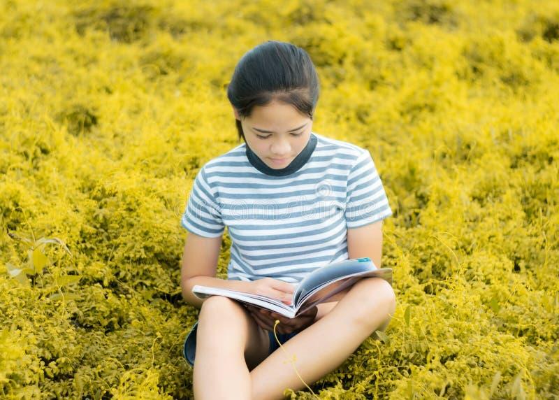 Ung flickaläsning i guld- ängcontrysidenatur i afton l fotografering för bildbyråer