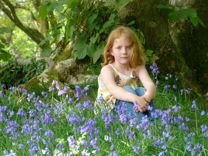 Ung flickasammanträde i ett blåklockaträ arkivfoto