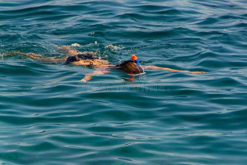 Ung flickasimning i havet royaltyfria foton