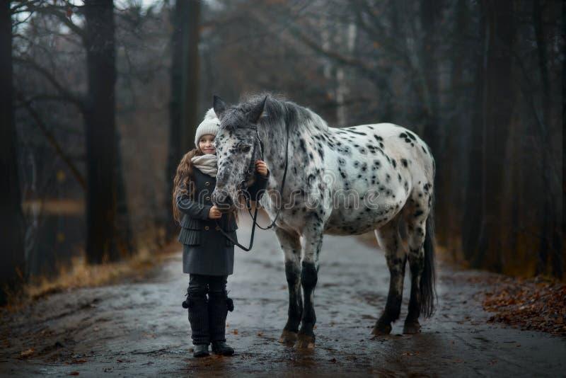 Ung flickastående med Appaloosahästen och Dalmatianhundkapplöpning fotografering för bildbyråer