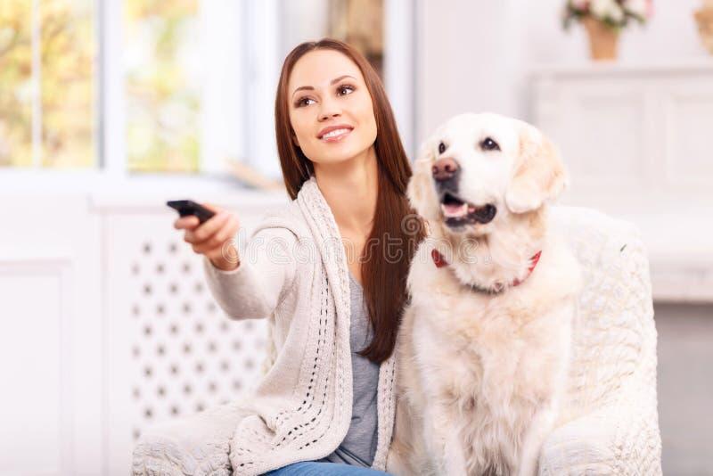Ung flickavisning något till hennes hund på TV royaltyfri bild
