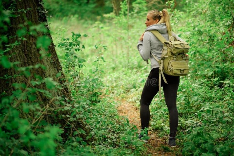 Ung fotvandrarekvinna med ryggsäcken royaltyfri fotografi