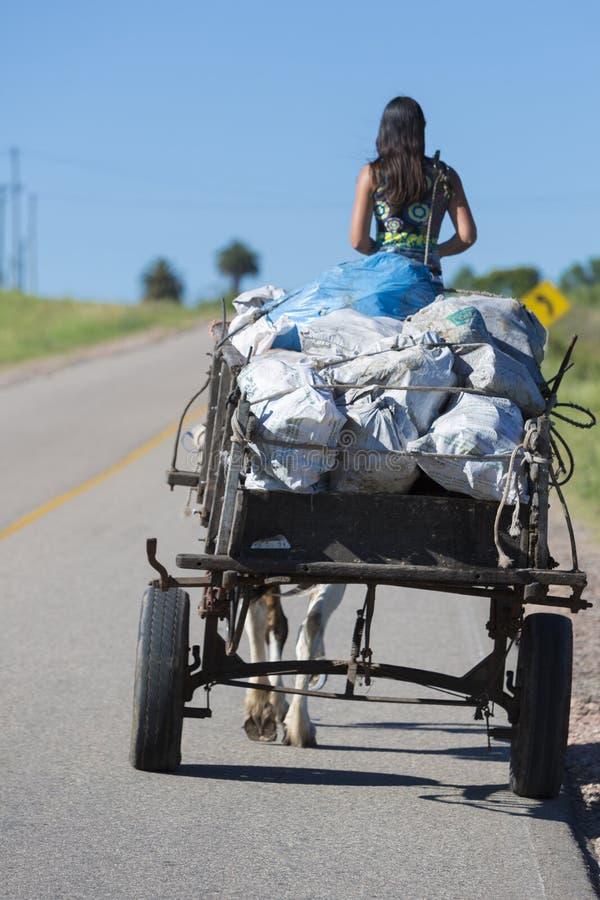 Ung Gauchokvinna och hästdragen vagn på vägen, Uruguay royaltyfri bild