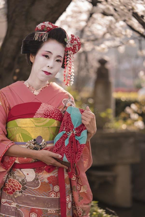 Ung Geisha eller maikoflicka i kimonot som framme poserar av en körsbärsröd blomning nära en bridg arkivbild