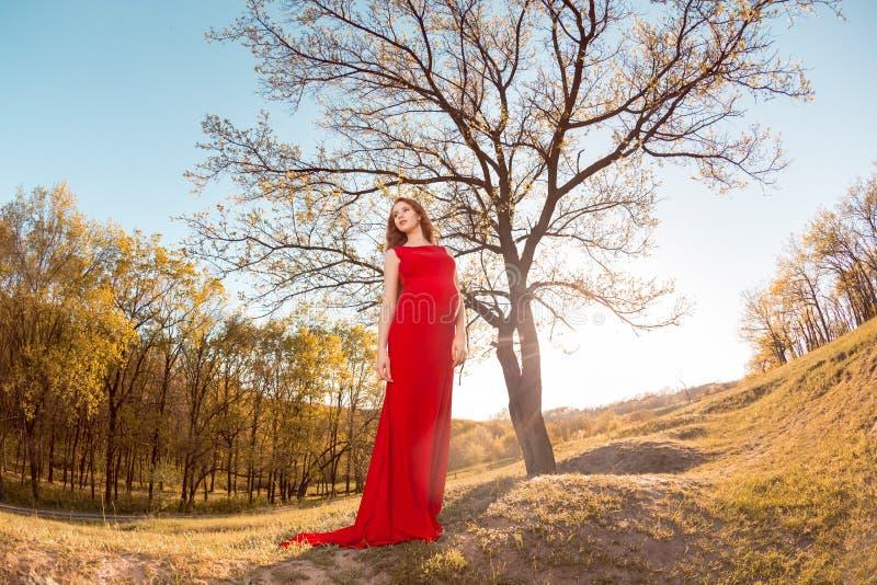 Ung gravid kvinna som kopplar av och tycker om liv royaltyfri fotografi