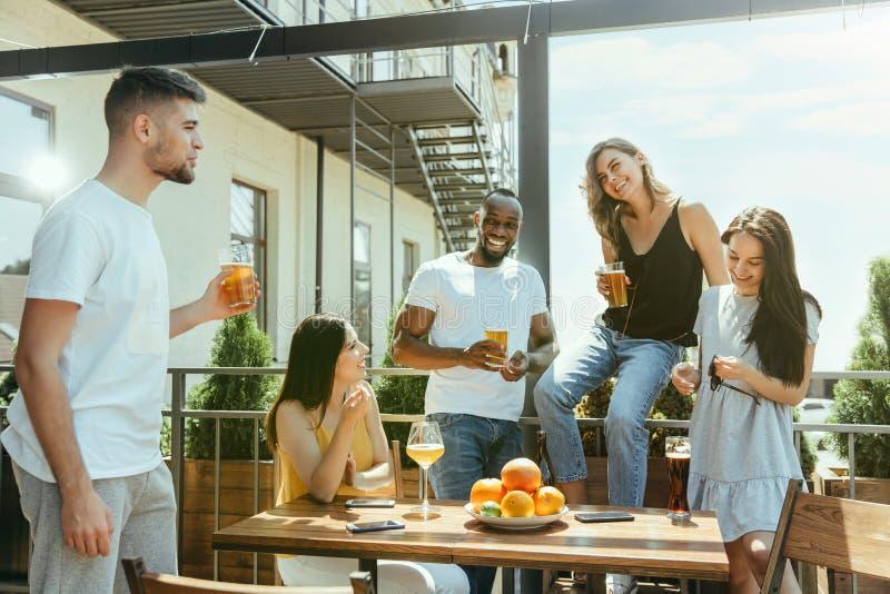Ung grupp av vänner som dricker öl och tillsammans firar royaltyfria foton