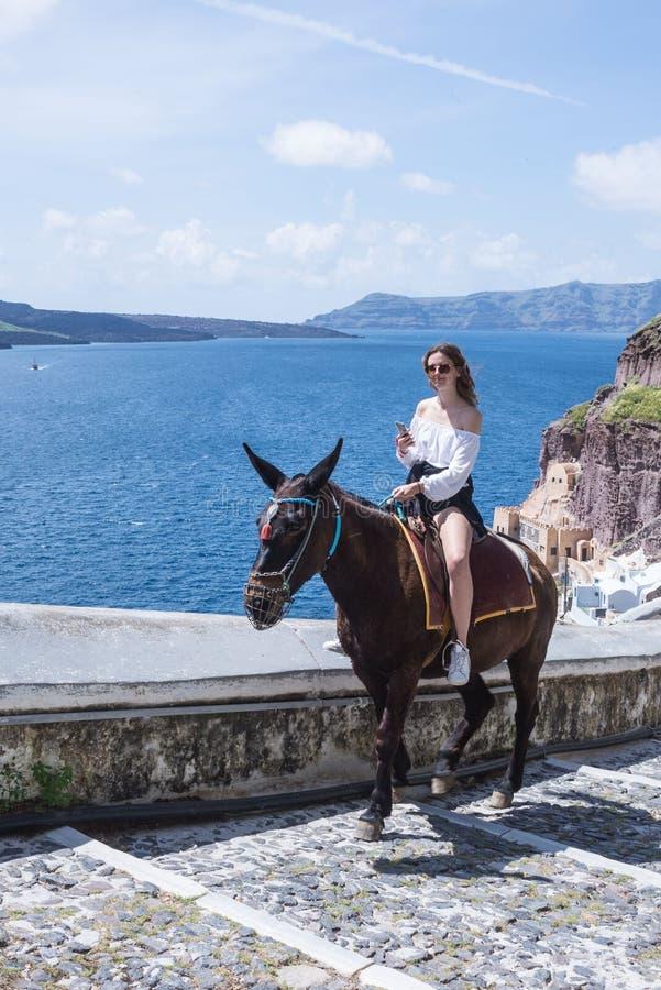 Ung härlig flicka i en vit blus och kortslutningar på en brun häst mot den blåa himlen och ön arkivfoto