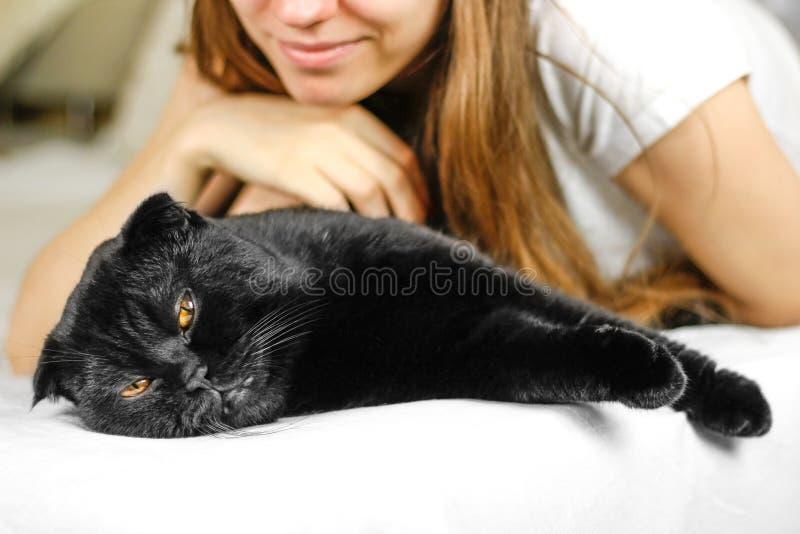 Ung härlig flicka och en svart skotsk veckkatt royaltyfri fotografi