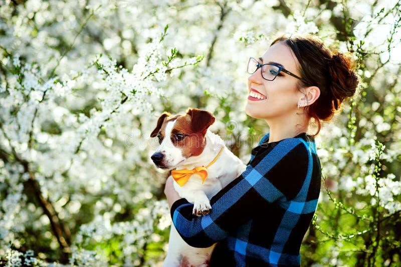 Ung härlig kvinna som ler och rymmer en hundJack Russell terrier i händerna på en bakgrund av att blomma för vår royaltyfri fotografi
