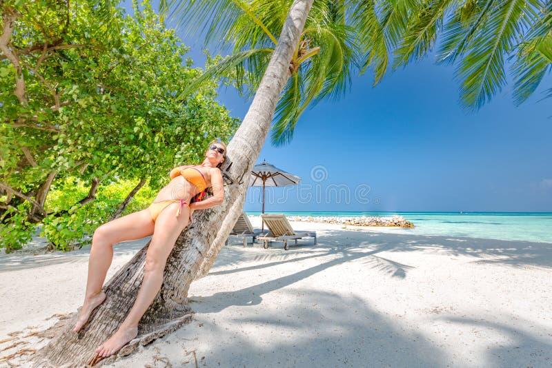 Ung härlig kvinna som sitter på palmträdet royaltyfria bilder