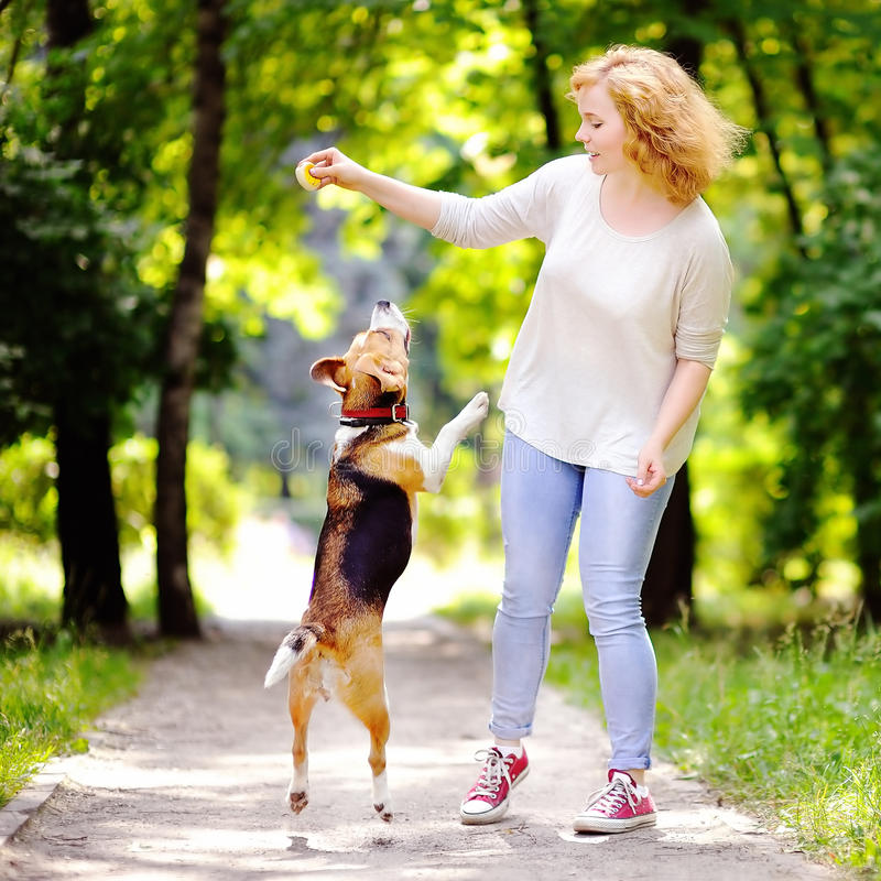 Ung härlig kvinna som spelar med beaglehunden arkivbild