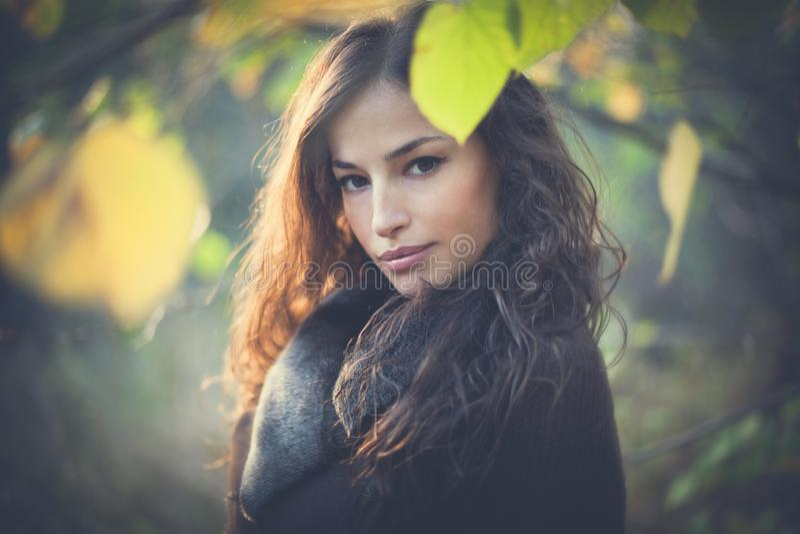 Ung härlig kvinnahöststående i skog arkivbild