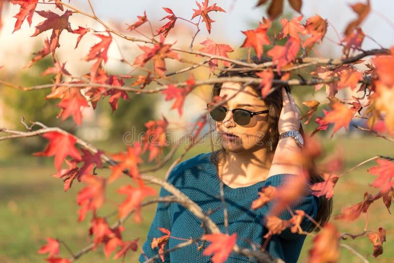 Ung härlig tonårs- flicka med solglasögon bak röda sidor för höst på trädet arkivbilder