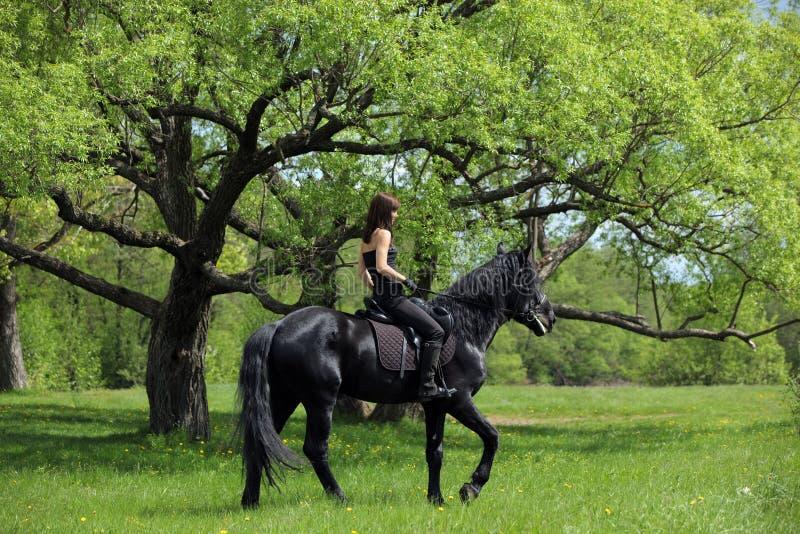 Ung hästryggryttare som har nöje i skog royaltyfria bilder