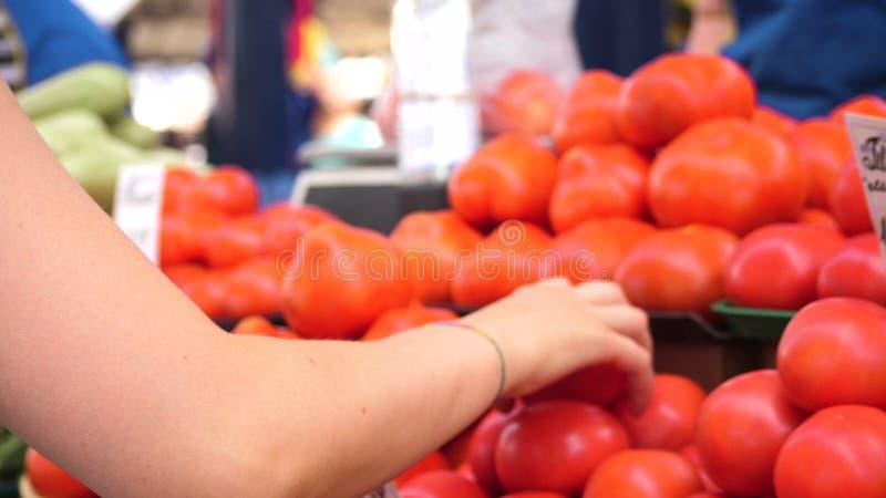 Ung h?rlig kvinna som v?ljer tomater p? gr?nskar?knare i stadsmarknadsplatsen med en oigenk?nnlig s?ljare p? royaltyfria foton