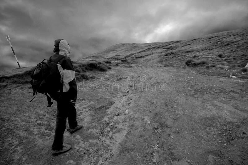 Ung klättrare royaltyfria bilder