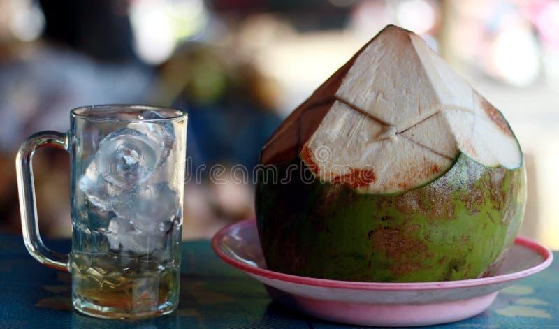 Ung kokosnöt och ett exponeringsglas av is arkivbild
