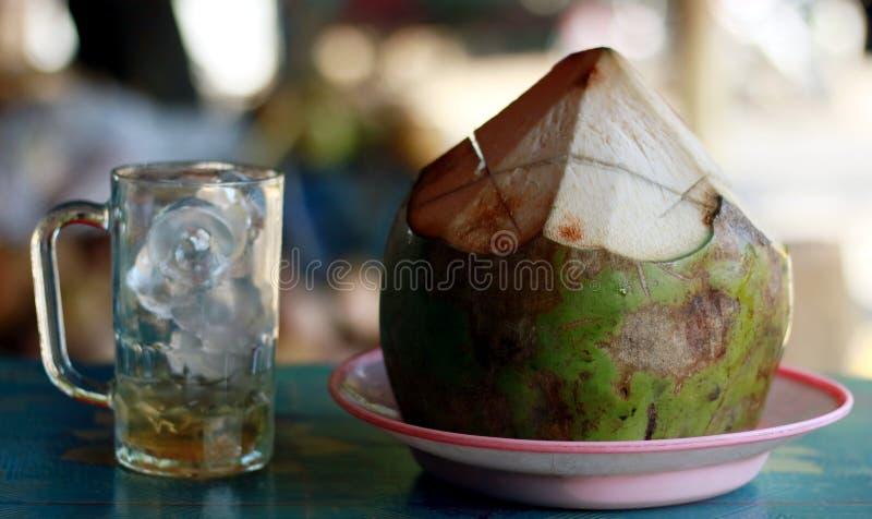 Ung kokosnöt och ett exponeringsglas av is fotografering för bildbyråer
