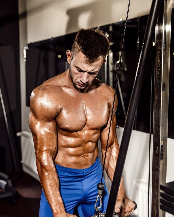 Ung kroppsbyggare som gör övningen för triceps arkivfoton