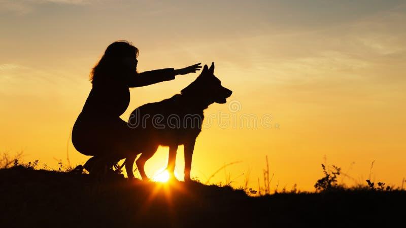 Ung kvinna för kontur som går med en hund i fältet på solnedgången, en flicka i ett höstomslag på kullen som visar hennes husdjur royaltyfria bilder