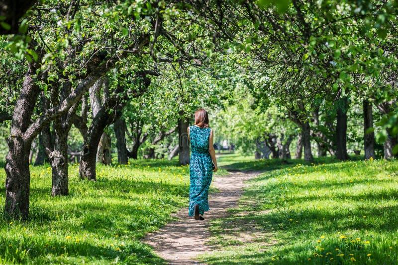 Ung kvinna i en lång klänning i en underbar vårblomningorch arkivbild