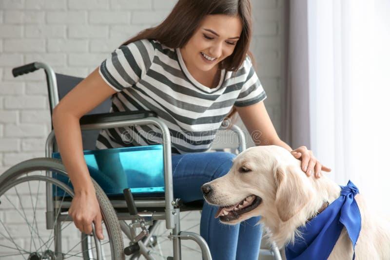 Ung kvinna i rullstol med hunden royaltyfria bilder
