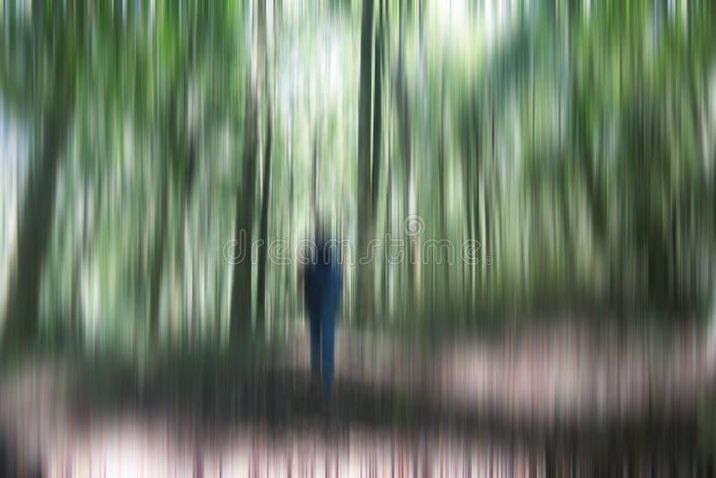 Ung kvinna, ung man som går i skogen bara i en skugga naturlig bakgrundsillustration Oskarp bild av träd och arkivbilder