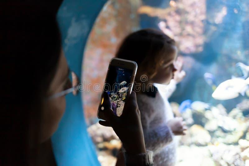 Ung kvinna med barnklockan en fisk i akvarium arkivbild