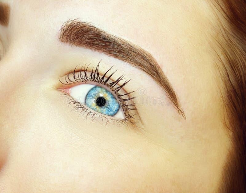 Ung kvinna med permanent ögonbrynmakeup, closeup fotografering för bildbyråer