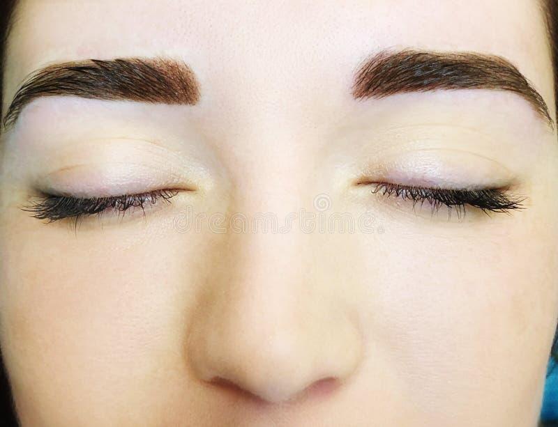 Ung kvinna med permanent ögonbrynmakeup, closeup royaltyfria foton