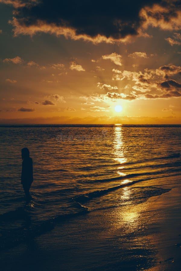 Ung kvinna på stranden fotografering för bildbyråer